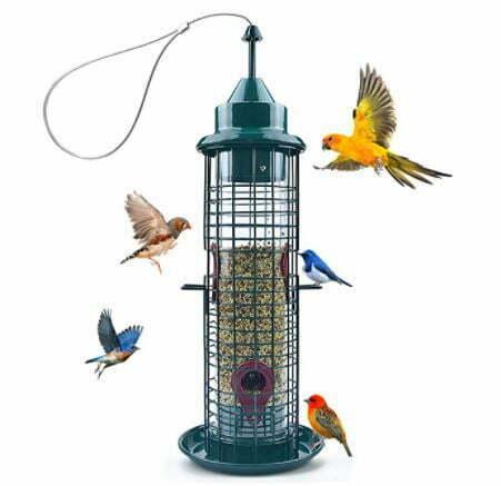types of bird feeders: Green Caged Tube Bird Feeder