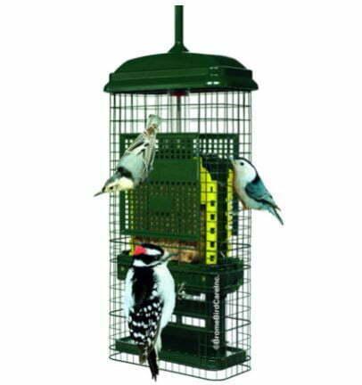 types of bird feeders: Suet Bird Feeder w/2 Suet Cake Trays